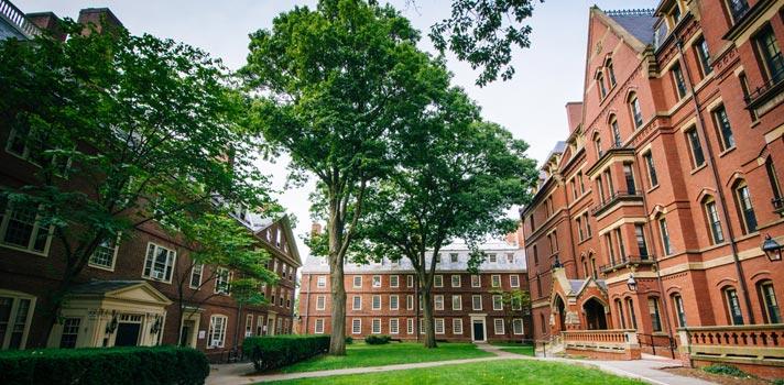 Bolsas de pesquisa em jornalismo em Harvard