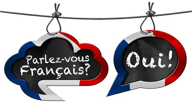 Amplia tus competencias profesionales con el dominio de la lengua francesa