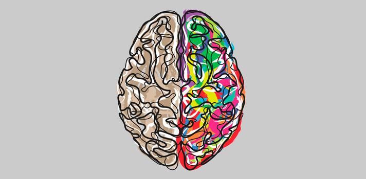 La neurociencia es una ciencia multidisciplinar que está cobrando cada vez más importancia en el marco de la investigación