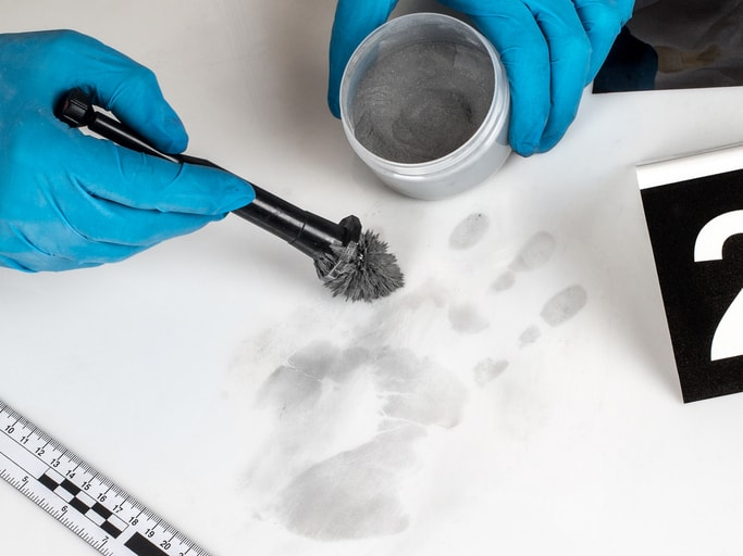 Las salidas profesionales de la carrera de criminología