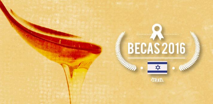 Israel: curso internacional de apicultura