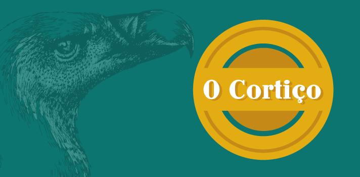 Resumo Fuvest 2016: O Cortiço, de Aluísio Azevedo - Estrutura e Linguagem