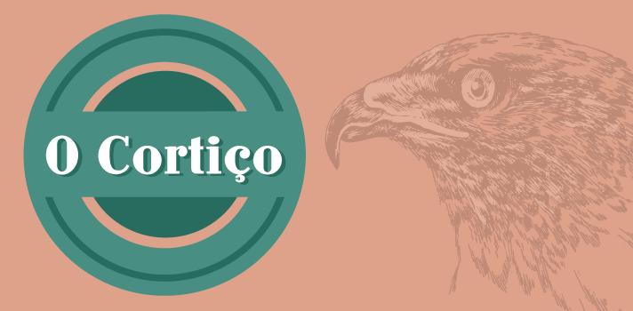 Resumo Fuvest 2016: O Cortiço, de Aluísio Azevedo - Movimento literário