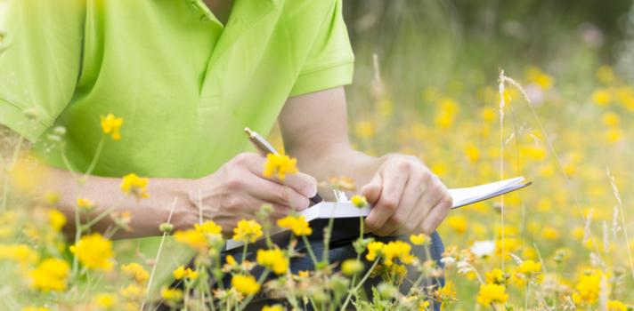¿Por qué estudiar Gestión Medioambiental en Chile?