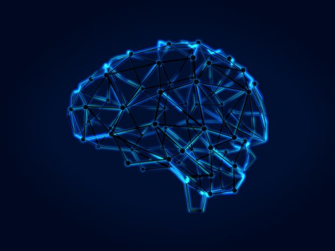 As apps para exercitar o cérebro que estão a dar que falar
