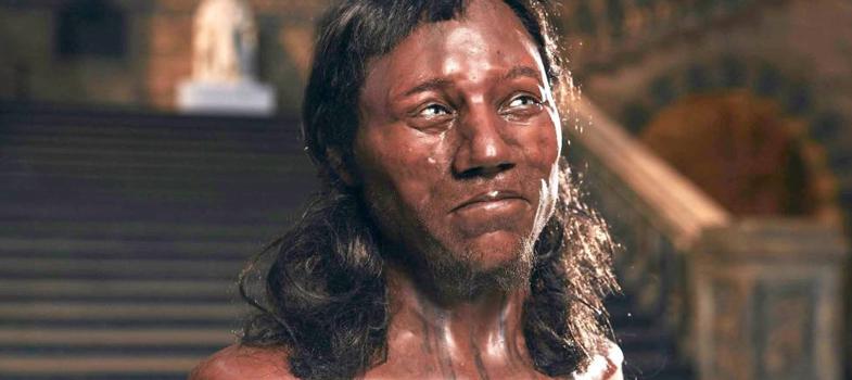 <p>Pele negra e olhos claros. Era a aparência do Homem de Cheddar, que viveu há cerca de 10 mil anos. Com modernas tecnologias, pesquisadores do Museu de História Natural de Londres sequenciaram o DNA de um esqueleto quase completo do nosso ancestral mais antigo já encontrado, descoberto na Inglaterra em 1903, e reconstruíram o seu rosto. </p><p>Para os estudiosos, até então, os primeiros humanos da Europa tinham pele clara, com base na melhor absorção da luz solar, evitando, assim, a deficiência de vitamina D em lugares com pouco sol.</p><p>Porém, as pesquisas mostraram que o chamado Homem de Cheddar (porque foi encontrado no desfiladeiro de Cheddar, em Somerset, na Inglaterra) possuía, em seu DNA, marcadores de pigmentação de pele associados aos humanos da África subsaariana. </p><p></p><p><strong>Cabelo castanho escuro e olhos verdes ou azuis</strong></p><p>O estudo identificou ainda que esses ancestrais tinham cabelo castanho escuro e olhos claros – verdes ou azuis. Embora seja apenas uma pessoa, o Homem de Cheddar indica, também, características da população da Europa à época, dizem pesquisadores.</p><p>Destacam, ainda, que não seria fidedigno basear a aparência dos nossos ancestrais com as pessoas de hoje. Portanto, que as características dos humanos atualmente não são algo fixo.</p><p></p><p><strong>Técnicas avançadas</strong></p><p>As condições da caverna Gough evitaram a degradação do material genético contido no esqueleto do Homem de Cheddar. Por ser um local constantemente frio, a ossada foi coberta por camadas de minerais.</p><p>Portanto, os pesquisadores identificaram os ossos densos. Após a extração, o DNA foi sequenciado por meio das técnicas mais avançadas disponíveis.</p><p>Na prática, os fragmentos de informações genéticas foram reunidos em um mapa e comparados com o genoma moderno. Entre os dados analisados, inicialmente, o foco foram os marcadores de características físicas.</p><p>Com informações genéticas e técnicas forenses, os estudiosos recon