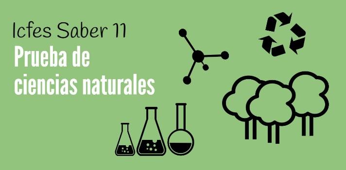 <p>Si te encuentras <strong>preparándote para las <a href=https://noticias.universia.net.co/tag/Icfes-pruebas-saber/ title=Noticias sobre las Pruebas Saber 11° del Icfes target=_blank>Pruebas Saber 11°</a></strong>, te contamos que dialogamos con el director de evaluación del Icfes, Andrés Gutiérrez, para saber cuáles son las principales dificultades que presenta la Prueba Saber 11 de ciencias naturales y cómo superarlas. Sigue leyendo y toma nota de las recomendaciones sugeridas..</p><blockquote style=text-align: center;>Visita nuestro <a href=https://www.universia.net.co/estudios/busqueda-avanzada class=enlaces_med_leads_formacion title=Portal de estudios de Universia Colombia target=_blank id=ESTUDIOS>portal de estudios</a> y descubre qué programas ofrecen las universidades colombianas</blockquote><p><strong>¿Cuál es el objetivo de la prueba de ciencias naturales?</strong></p><p>La educación en ciencias naturales <strong>se trata de formar personas capaces de reconstruir significativamente el conocimiento existente</strong>, aprendiendo a aprender, a razonar, a tomar decisiones, a resolver problemas, a pensar con rigurosidad, y a valorar de manera crítica el conocimiento y su efecto en la sociedad y en el ambiente.</p><p></p><p><strong>¿Qué estructura posee la evaluación?</strong></p><p>Se conforma de preguntas múltiple opción (A, B, C o D) de las cuales solo una es correcta. También presenta preguntas abiertas que requieren respuestas cortas.</p><p></p><p><strong>¿Cuáles son las principales dificultades cuando se enfrenta la prueba de ciencias naturales?</strong></p><p>Las dificultades radican en desarrollar las competencias que mide la prueba. Generalmente, <strong>los estudiantes memorizan definiciones y repiten algoritmos en lugar de razonar</strong> lo que se estudia, obteniendo desempeños insatisfactorios.</p><blockquote style=text-align: center;>Descubre más<a href=https://noticias.universia.net.co/tag/consejos-para-las-pruebas-Saber-11/ title=Consejos par