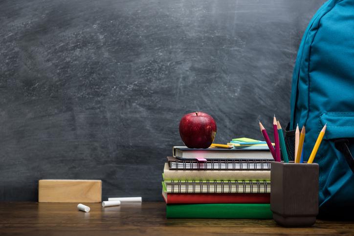 ¿Qué hace el INEE en España? ¿Cuáles son sus funciones principales? En este artículo te contamos la importancia de este organismo en relación a la educación en España.