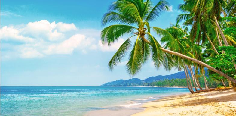 <h2>Dicas de destinos para intercâmbio com praia</h2><h2>1. Curta as praias da Austrália</h2><p>O litoral australiano oferece um badalado circuito em opções bastante atrativas para o turismo e lazer.</p><p>Por outro lado, os índices e oportunidades de estudo (e até de trabalho) no território da Austrália fazem da experiência imperdível.</p><p>O país contempla, ainda, uma grande tradição no surf.</p><p></p><p><a href=https://noticias.universia.com.br/cultura/noticia/2017/11/01/1156355/6-motivos-fazer-intercambio-australia.html><span>6 motivos para fazer um intercâmbio na Austrália</span></a></p><p></p><h2>2. Relaxe no litoral da Irlanda</h2><p>Já está bastante difundido que uma experiência intercambiária na Irlanda tem proporcionado excelentes resultados de aprendizado – tanto em idioma quanto no âmbito cultural.</p><p>No entanto, nem sempre se comenta sobre as possibilidades de ampliar essa experiência no litoral. Principalmente no verão, a costa irlandesa possui um circuito dedicado ao surf e à paisagens inesquecíveis.</p><p></p><p><a href=https://noticias.universia.com.br/cultura/noticia/2017/10/11/1156134/fazer-intercambio-traz-experiencias-inesqueciveis.html><span>Fazer um intercâmbio traz experiências inesquecíveis</span></a></p><p></p><h2>3. Estados Unidos e suas praias</h2><p>Os cenários mais famosos dos filmes e jogos de videogame podem estar a seu alcance com uma opção de intercâmbio em terras norte-americanas.</p><p>Destino bastante comum para intercâmbio, os Estados Unidos também dão um show em seu litoral.</p><p>Além do famosíssimo Havaí, existem excelentes cenários na Flórida, Carolina do Norte e, é claro, na Califórnia.</p><p></p><p>*</p><p>Está pensando em estudar fora e adora o litoral? Fique de olho nessa lista e, é claro, mantenha o foco na experiência do intercâmbio e, nos momentos de folga, curta as praias ao redor do mundo. </p>