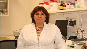 Investigadores da Universidade de Coimbra localizam a distribuição celular da proteína envolvida na Doença de Alzheimer