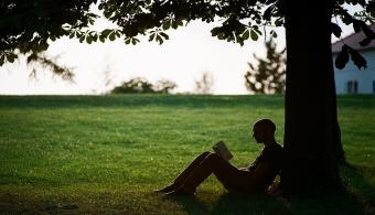 Estudiar al aire libre puede ser muy inspirador