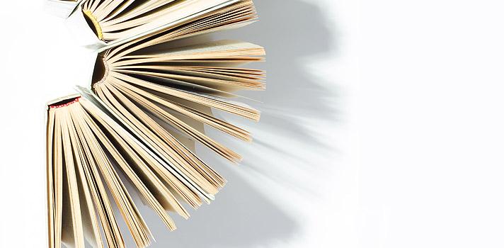 Baixe grátis o livro Obras Seletas, de Rui Barbosa