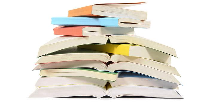Baixe gratuitamente o livro Ingleses na Costa, de França Júnior