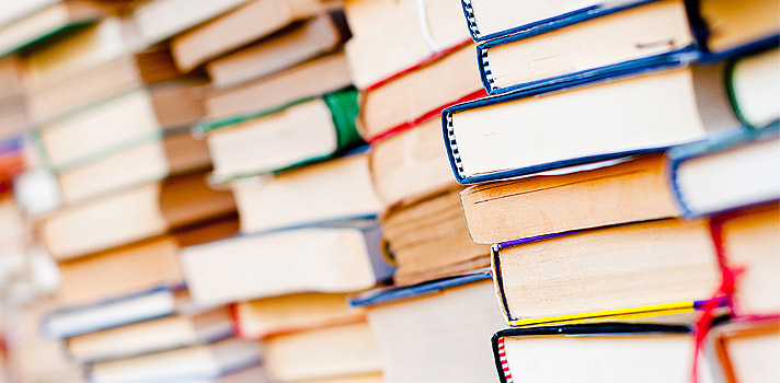 Baixe grátis o livro Um Coração Simples, de Gustave Flaubert