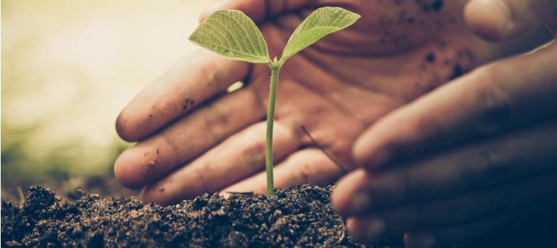 Conferência nacional reúne escolas e propõe cuidados com o meio ambiente