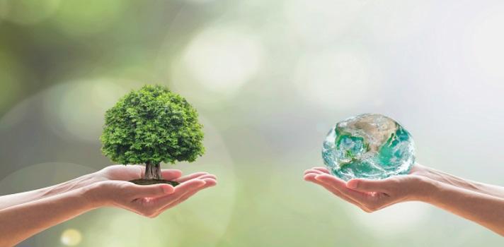 El uso de energías renovables es una de las medidas al alcance de todas las organizaciones