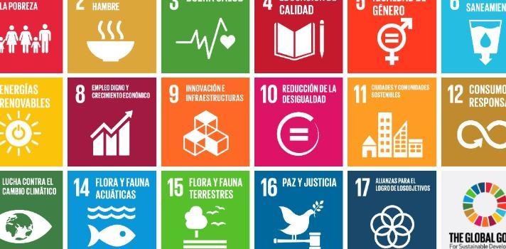 La ONU promueve este proyecto con ayuda de los centros escolares y las instituciones sociales