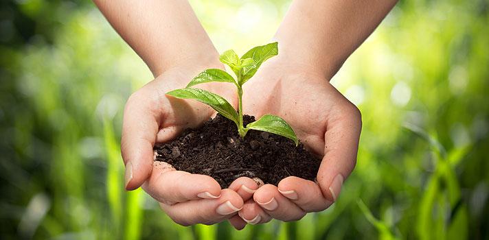 <p>O Prêmio Empreendedorismo Sustentável, uma iniciativa do <strong>Santander Universidades</strong>, por meio do Programa Amazônia 2020, divulgou nesta quinta-feira (4) a lista de semifinalistas do concurso que reconhece os melhores projetos empreendedores ligados à preservação do meio ambiente, economia reversa e extrativismo.</p><p></p><p><span style=color: #333333;><strong>Você pode ler também:</strong></span><br/><a style=color: #ff0000; text-decoration: none; text-weight: bold; title=Prêmio Santander Universidades entrega mais de R$ 2 milhões em incentivos à educação href=https://noticias.universia.com.br/destaque/noticia/2015/11/23/1133952/premio-santander-universidades-entrega-r-2-milhes-incentivos-educacao.html>» <strong>Prêmio Santander Universidades entrega mais de R$ 2 milhões em incentivos à educação</strong></a><br/><a style=color: #ff0000; text-decoration: none; text-weight: bold; title=Santander Universidades entrega 100 bolsas para alunos do ensino superior href=https://noticias.universia.com.br/destaque/noticia/2015/11/13/1133704/santander-universidades-entrega-100-bolsas-alunos-ensino-superior.html>» <strong>Santander Universidades entrega 100 bolsas para alunos do ensino superior</strong></a><br/><a style=color: #ff0000; text-decoration: none; text-weight: bold; title=Todas as notícias sobre Bolsas de estudo e prêmios href=https://noticias.universia.com.br/estudar-exterior>» <strong>Todas as notícias sobre bolsas de estudo e prêmios</strong></a></p><p></p><p><strong><a title=Santander lança 2ª edição do Prêmio Empreendedorismo Sustentável href=https://noticias.universia.com.br/destaque/noticia/2015/10/14/1132398/santander-lanca-2-edicao-premio-empreendedorismo-sustentavel.html>O prêmio, que está em sua segunda edição, é voltado para 8 universidades federais da região Norte do País</a></strong>(UFT, UFPA, UNIFAP, UFAM, UFAC, UFRR, UFRA e UFOPA) e entrega mais R$ 100 mil aos três melhores projetos apresentados, sendo R$ 50 mil para o primeiro coloc