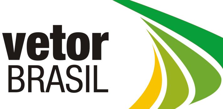 Conheça o Programa Trainee voltado para Gestão Pública do Vetor Brasil