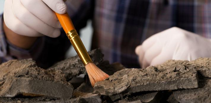 La Arqueología es un campo con múltiples subdisciplinas por explotar
