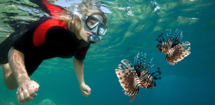 El daño a los océanos hace más necesaria la intervención de biólogos para proteger la flora y fauna marina