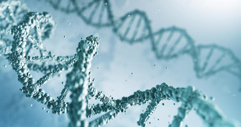 Ao longo da história, teorias da origem da vida foram criadas para explicar de onde viemos.