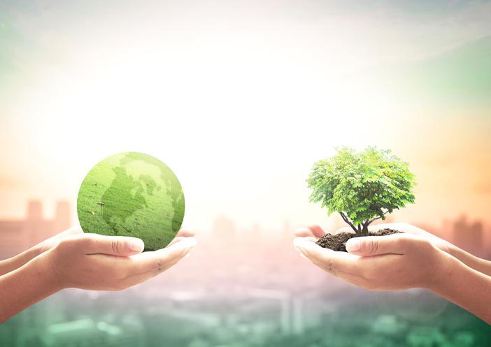 Día nacional de la conciencia ambiental Argentina
