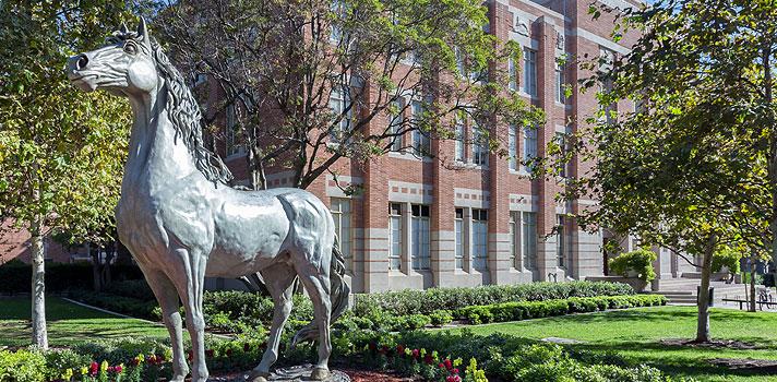 <p>A <strong>Universidade do Sul da Califórnia (USC)</strong> está com inscrições abertas para o <em>Undergraduate Preparation Program</em>, curso que auxilia na preparação de estudantes estrangeiros para o processo seletivo de grandes universidades internacionais. A instituição americana oferecerá uma bolsa de estudos integral a um dos candidatos ao programa.</p><p></p><p><span style=color: #333333;><strong>Veja também:</strong></span><br/><br/><a style=color: #ff0000; text-decoration: none; text-weight: bold; title=Abertas inscrições para bolsas de estudo nos Estados Unidos e Porto Rico href=https://noticias.universia.com.br/estudar-exterior/noticia/2015/11/06/1133354/abertas-inscrices-bolsas-estudo-estados-unidos-porto-rico.html>» <strong>Abertas inscrições para bolsas de estudo nos Estados Unidos e Porto Rico</strong></a><br/><a style=color: #ff0000; text-decoration: none; text-weight: bold; title=ONU oferece curso online e gratuito sobre meio ambiente href=https://noticias.universia.com.br/destaque/noticia/2015/11/06/1133357/onu-oferece-curso-online-gratuito-sobre-meio-ambiente.html>» <strong>ONU oferece curso online e gratuito sobre meio ambiente</strong></a><br/><a style=color: #ff0000; text-decoration: none; text-weight: bold; title=Todas as notícias de Educação href=https://noticias.universia.com.br/educacao>» <strong>Todas as notícias de Educação</strong></a></p><p></p><p>Com duração total de 3 meses, o <strong>Undergraduate Preparation Program</strong> acontecerá de maio a agosto de 2016. Seu principal objetivo é auxiliar os candidatos a melhorarem seu nível de inglês e também notas em testes importantes, como o <strong>SAT/ACT</strong>.</p><p></p><p>Também serão oferecidos workshops de redação e aulas de como se sair bem na famosa entrevista presencial, que faz parte do processo de seleção de alunos em grande parte das universidades estrangeiras.</p><p></p><p>A bolsa de estudos para o programa oferecerá cobertura total do valor do curso, que custa US$ 9 