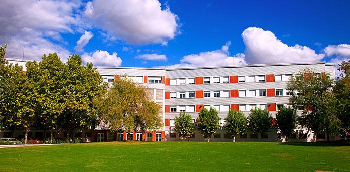 <p>A <strong>Universidade de La Rioja</strong>, na Espanha, em parceria com o <strong><a title=Santander Universidades href=https://www.santanderuniversidades.com.br/Paginas/default.aspx target=_blank>Santander Universidades</a></strong>, está ofertando 8 bolsas de estudos para alunos brasileiros de cursos de graduação. A oportunidade é para um programa trimestral de língua e cultural espanhola.</p><p></p><p><span style=color: #333333;><strong>Você pode ler também:</strong></span><br/><br/><a title=Maior feira de intercâmbio do mundo chega ao Brasil href=https://noticias.universia.com.br/destaque/noticia/2016/02/23/1136609/maior-feira-intercambio-mundo-chega-brasil.html>» <strong>Maior feira de intercâmbio do mundo chega ao Brasil</strong></a><br/><a title=Harvard e MIT levarão estudantes brasileiros para evento nos EUA com tudo pago href=https://noticias.universia.com.br/estudar-exterior/noticia/2016/02/22/1136565/harvard-mit-levarao-estudantes-brasileiros-evento-eua-tudo-pago.html>» <strong>Harvard e MIT levarão estudantes brasileiros para evento nos EUA com tudo pago</strong></a><br/><a title=Todas as notícias sobre Bolsas de estudo e prêmios href=https://noticias.universia.com.br/estudar-exterior>» <strong>Todas as notícias sobre bolsas de estudo e prêmios</strong></a></p><p></p><p>A iniciativa tem como objetivo estimular a aprendizagem do idioma por universitários do Brasil, com intuito de complementar sua formação. As aulas serão divididas em três períodos de três semestres, com período de duração que vai de outubro de 2016 a junho de 2017.</p><p></p><p>Para participar, os interessados devem preencher o formulário de solicitação online no site da universidade, até o dia 03 de abril de 2016. <strong>As bolsas são de 1.500 euros</strong> e cobrem gastos com passagens, taxas acadêmicas, alojamento em residência universitária e seguro saúde.</p><p></p><p>Para inscrições e mais informações sobre o programa, <strong><a title=Bolsas La Rioja href=https://www.unirioja