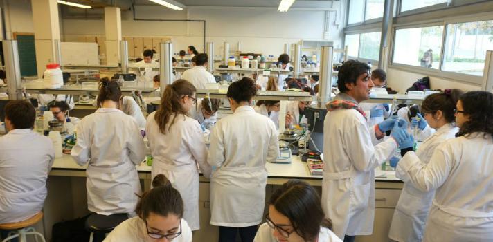 La URV convoca 25 nuevas plazas para investigadores predoctorales