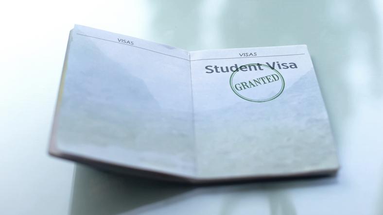 Os vistos de estudante são exigidos para realização de cursos no exterior.