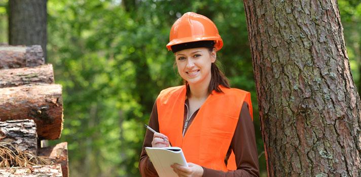 Estos profesionales pueden trabajar como encargados, especialistas, directores e incluso como consultores