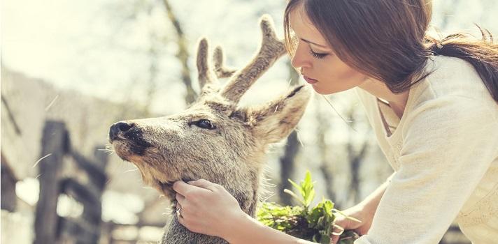 4 carreras que puedes estudiar si te gustan los animales