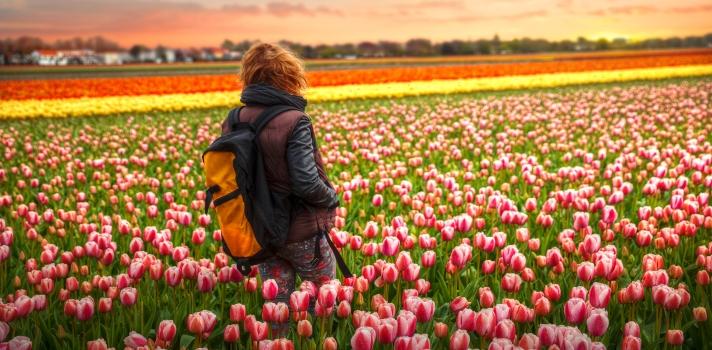¿Vas a estudiar a los Países Bajos? ¡Te contamos 10 curiosidades que debes saber!