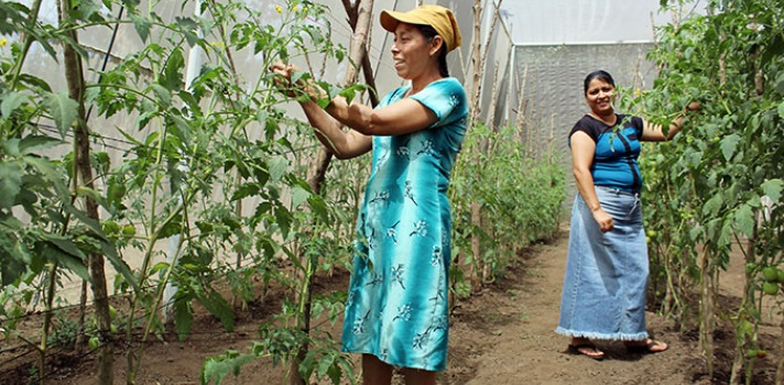 Mujeres en Acción: un programa de Ciudad Mujer para el empoderamiento de las mujeres rurales salvadoreñas