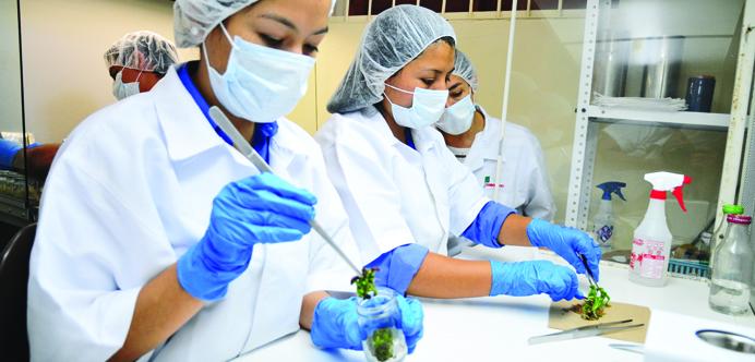 Escuela Agrícola Panamericana Zamorano de Honduras
