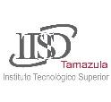 Instituto Tecnológico Superior de Tamazula de Gordiano