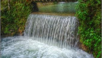 <p style=text-align: justify;>En los próximos 50 años, <strong>Costa Rica podrá enfrentar una alta reducción en su oferta de agua potable</strong>, lo que devendrá en alarmantes problemas de supervivencia para 70 especies de flora y 348 de fauna. Así se desprende del más reciente estudio de cambio climático, que fue presentado por la <a href=https://www.costaricaporsiempre.org/ target=_blank><strong>Asociación Costa Rica por Siempre</strong></a>.</p><p style=text-align: justify;></p><p><strong>Lee también</strong><br/><a style=color: #ff0000; text-decoration: none; title=El agua está en peligro de desaparecer href=https://noticias.universia.cr/en-portada/noticia/2013/05/29/1027109/agua-esta-peligro-desaparecer.html>» <strong>El agua está en peligro de desaparecer</strong></a></p><p></p><p style=text-align: justify;><br/>El informe señala también que<strong> las precipitaciones disminuirán debido al aumento de temperatura de 3°C en las próximas cinco décadas</strong>. Entre otras cosas, esto generará que los cortes de agua en algunas zonas del Valle Central puedan darse con mayor frecuencia, en todo el país.</p><h4 style=text-align: justify;>Concientizar y tomar medidas</h4><p style=text-align: justify;><br/>Luego de evaluar 34 corredores biológicos presentes en el país, los expertos concluyeron que siete reducirán su caudal de agua entre un 50% y 85%. Para frenar la crisis del agua, la Directora de la Asociación Costa Rica por Siempre, Zdenka Piskulich, señala que es fundamental <strong>poner en marcha acciones en áreas protegidas clave.</strong></p><p style=text-align: justify;><br/>Pese a eso, remarcó que el reto principal es <strong>concientizar a los costarricenses</strong> de que el problema actual de la escasez del agua será irreversible en pocos años si no se toman acciones a partir de este momento.</p><p style=text-align: justify;><br/>Un claro ejemplo de eso, es la problemática que presentarán las tortugas que anidan en el país, ya que el crecimiento del ni
