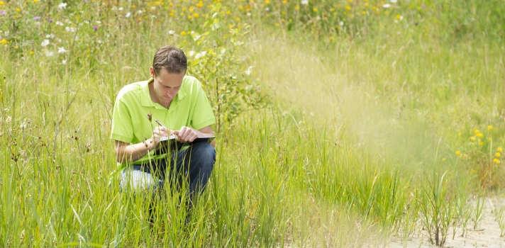 Berkeley: La mejor universidad para estudiar Ciencias Ambientales