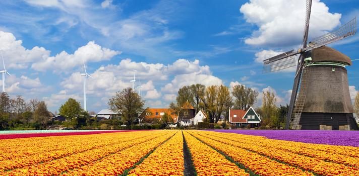 <p>¿Alguna vez soñaste con estudiar en Holanda? De no ser así, deberías, pues con su alto nivel de vida, amplia oferta de cursos en inglés y excelencia académica reconocida mundialmente, este país constituye uno de los <a href=https://noticias.universia.net.co/estudiar-extranjero/noticia/2015/10/14/1132380/descubre-estudiar-holanda-puede-gran-opcion.html title=Descubre por qué estudiar en Holanda puede ser una gran opción>destinos más elegidos por estudiantes</a>de todo el mundo.</p><blockquote style=text-align: center;>Regístrate <a href=https://usuarios.universia.net/home.action class=enlaces_med_registro_universia title=Regístrate aquí para estar informado sobre becas, ofertas de empleo, prácticas, Moocs, y mucho más target=_blank id=REGISTRO_USUARIOS> aquí</a> para estar informado sobre becas, ofertas de empleo, prácticas, Moocs, y mucho más</blockquote><p>En esta oportunidad te compartimos una convocatoria ofrecida por la <a href=https://www.uva.nl/en/home target=_blank>Universidad de Ámsterdam</a>, una de las ciudades más cautivantes de este país. La institución brinda <strong>becas de maestría</strong> por un valor de <strong>25 mil euros</strong> para estudiantes de países ajenos a la Unión Europea.</p><p>Esta <strong>beca cubre la totalidad de los gastos de matrícula y manutención</strong> del estudiante durante el primer año de estudio, aunque existe una posibilidad de prórroga para extender la ayuda económica por un año más.</p><p>Para postularte a esta convocatoria, debes haberte graduado de la universidad (en cualquier disciplina) con un desempeño académico sobresaliente. Además, debes haber sido <strong>aceptado previamente</strong> al programa de maestría al que deseas postularte, así como poseer los <strong>conocimientos de inglés</strong> necesarios para estudiar a nivel de posgrado en este idioma.</p><blockquote style=text-align: center;>Visita nuestra <a href=https://www.universia.net.co/estudiar-extranjero title=Guía de movilidad target=_blank>gu