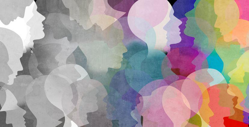 Guia das Saídas Profissionais na Área das Humanidades