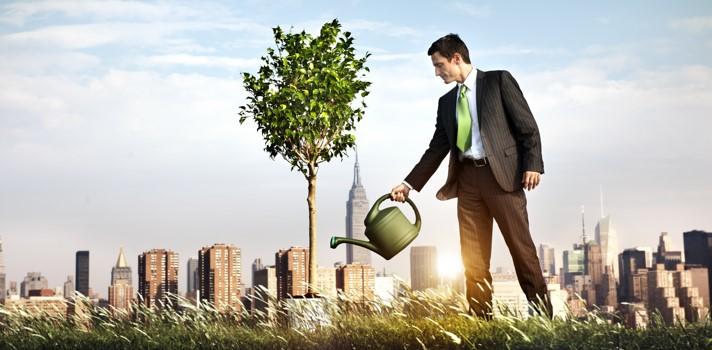 5 reglas que debe seguir todo nuevo emprendedor