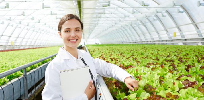 A indústria de máquinas agrícolas, fertilizantes e rações e as próprias plantações fazem parte dessa gama de oportunidades que os profissionais podem atuar