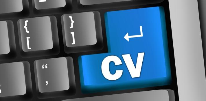 Los CVs también pueden ser documentos atractivos y con fuerte carga visual