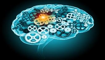 Científicos afirman que los brain games no ejercitan la mente