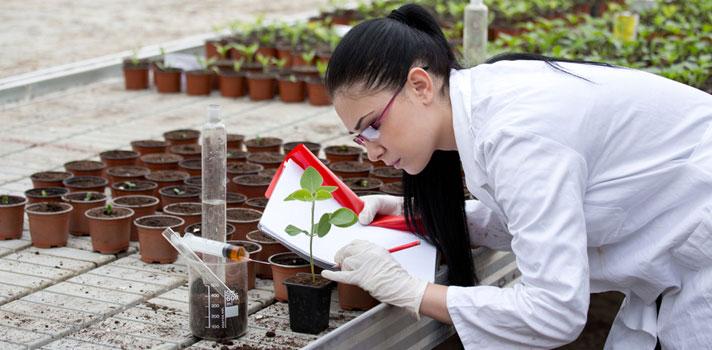 Ingeniera agronoma realizando observaciones en muestras