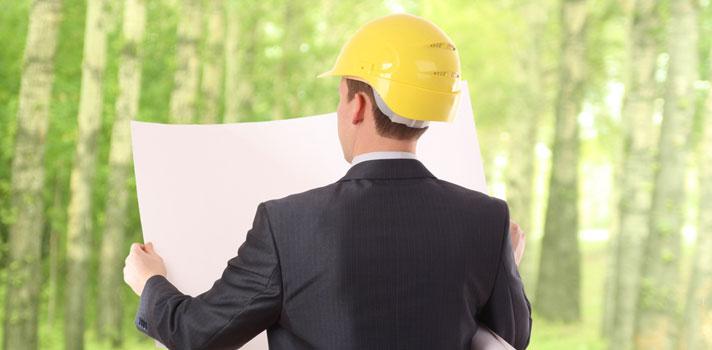 ¿Qué habilidades debe tener un Ingeniero Forestal? (+ infografía)