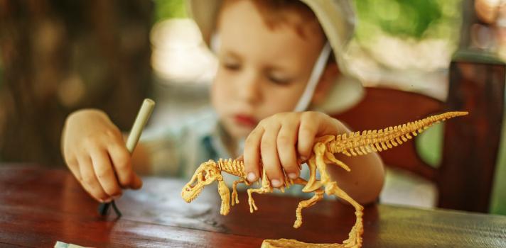 Niño jugando a ser arqueólogo