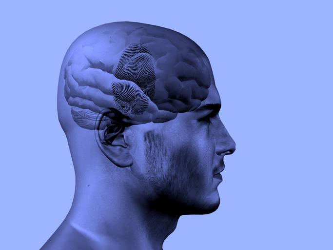 A Psicologia Forense pode ser uma opção que valha a pena investigar como possível carreira de futuro.