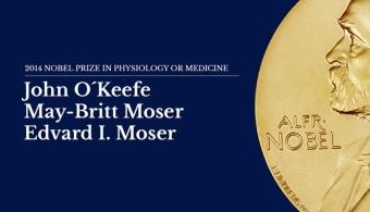 Un matrimonio de científicos noruego y un estadounidense ganaron el Premio Nobel de Medicina